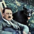 Les nazis: véritables amis des animaux?